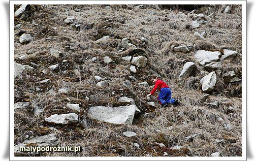 Lodowiec Molltaler Gletscher